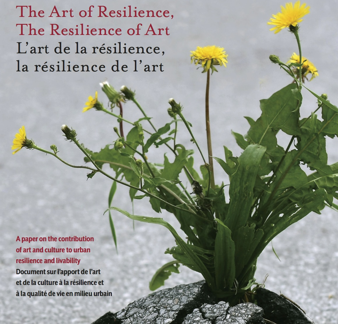 Art_of_Resilience