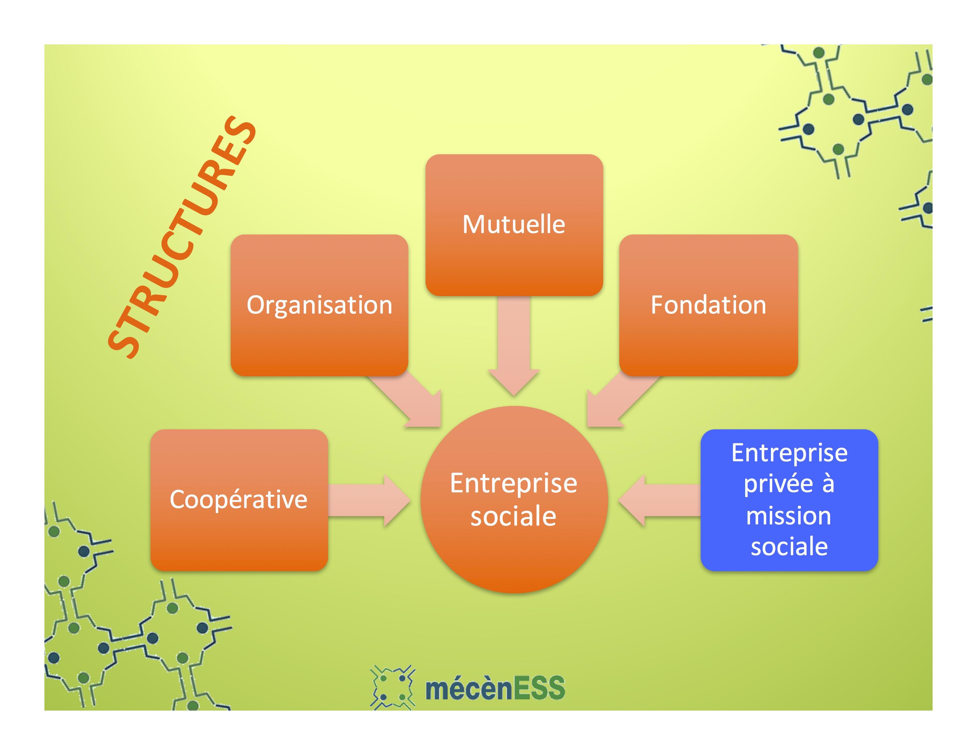 structure-financement-et-etapes